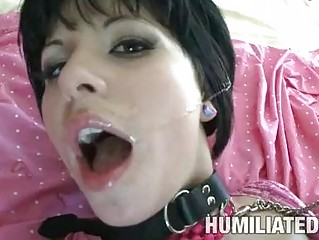 Kinky dark haired pornstar gets aroused by being humiliated