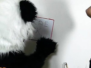 Panda's such a bad student! His teacher is very unhappy, panda didn't even do his homework. After a whilst the sexy teacher decided to give up maths and educate panda bear some other lesson. Her large assortment of kinky sex toys is really impressive, and the filthy chick knows how to use 'em. However, none of her fun sex toys is as large and arousing as panda bear's huge ding-dong. After a steamy and fun fucking session the strict teacher is lastly glad with her student. Good job, panda bear, fucking A!...