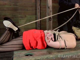 Blindfolded with duct tape and tied up, this brunette milf Elise is receives a rough mouth fuck from her executor. The guy is not joking around and he inserts his penis deep in her throat, showing this whore what her sensual pink lips are good for. Perhaps some warm jizz on her face will easy her punishment