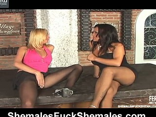 Sexy shemales bringing each other ultimate satisfaction in a-hole-banging bout